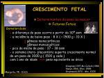 crescimento fetal18