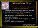 crescimento fetal7