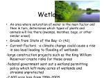 wetlands45
