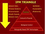 ipm triangle