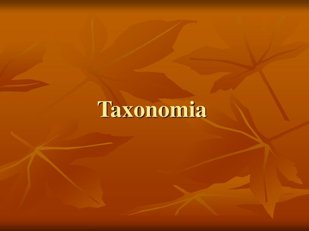 taxonomia l.