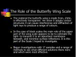 the role of the butterfly wing scale