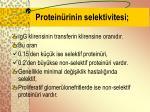 protein rinin selektivitesi