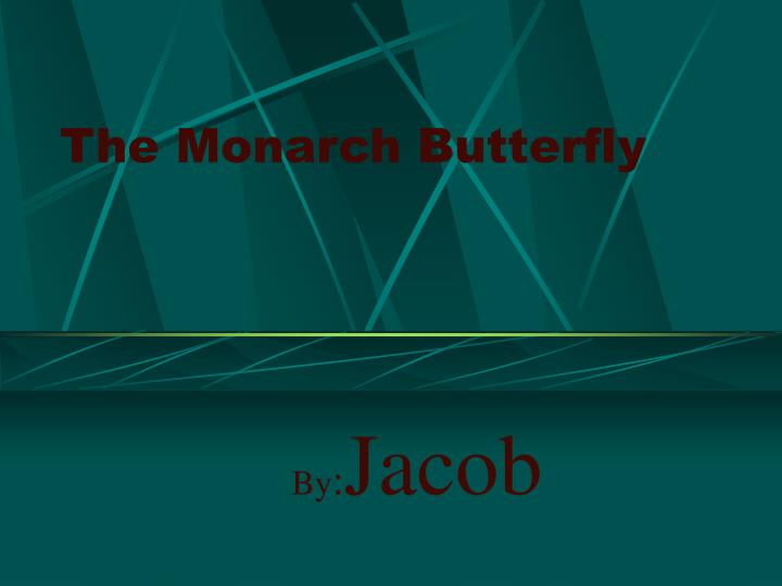 the monarch butterfly n.