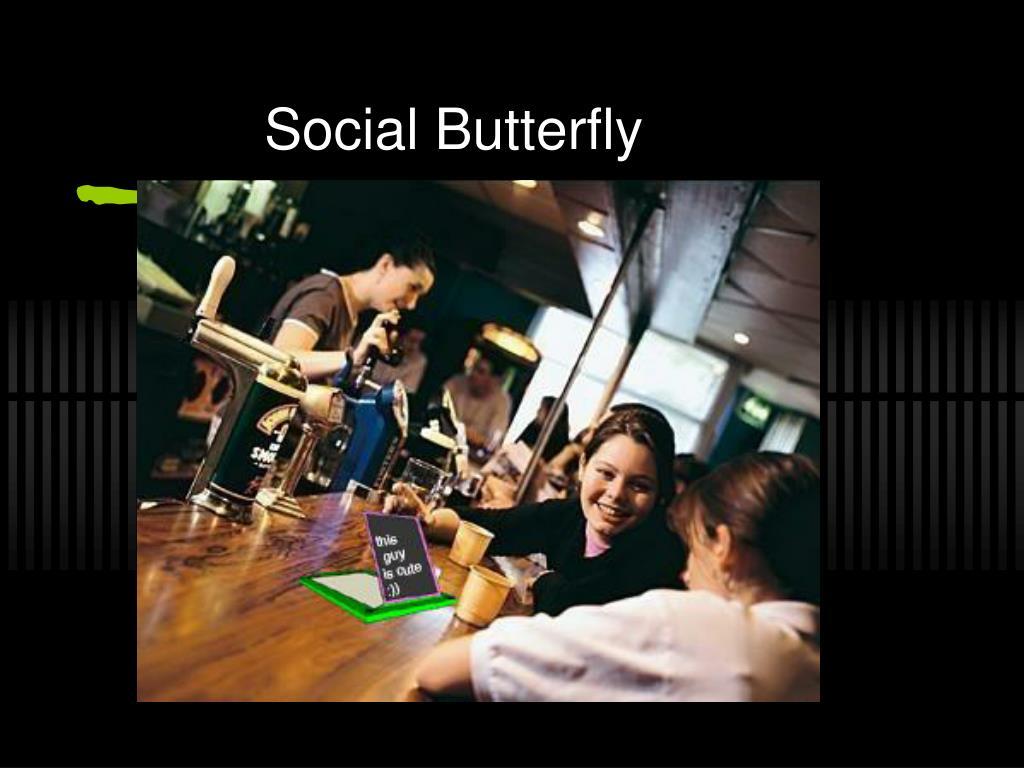 social butterfly l.