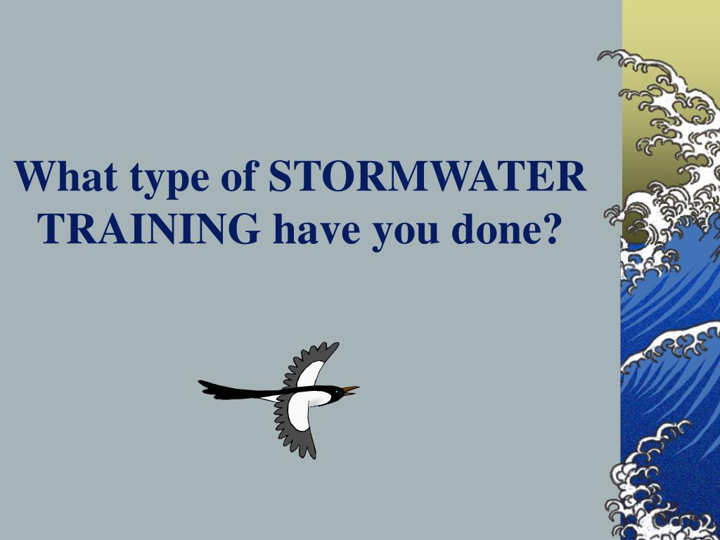 What type of STORMWATER TRAINING have you done?