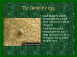 the butterfly egg