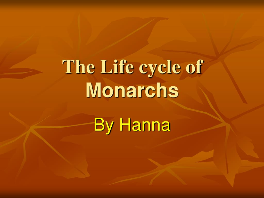 the life cycle of monarchs l.