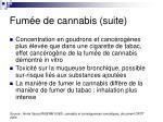 fum e de cannabis suite