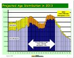 projected age distribution in 2013