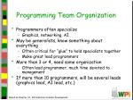 programming team organization