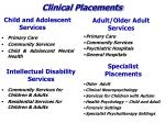 clinical placements