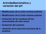 actividadbenzim tica y variaci n del ph