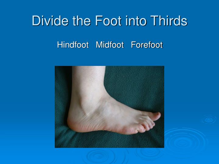 Divide the foot into thirds