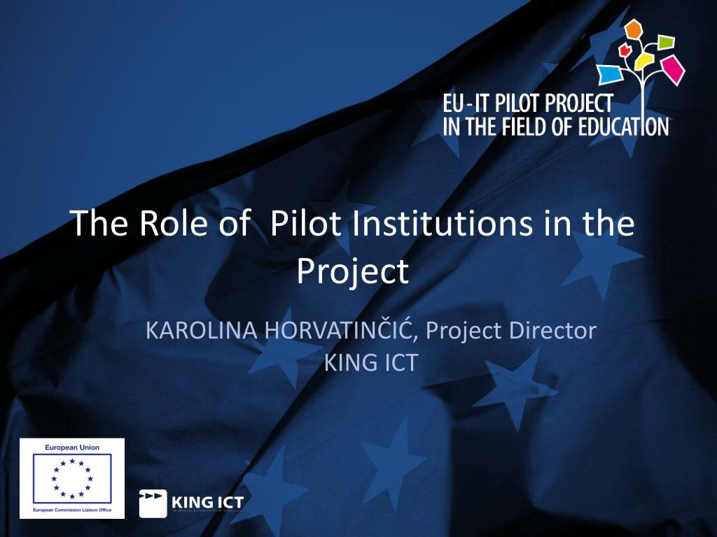 the role of p ilot institutions in the project l.