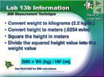 lab 13b information bmi measurement technique