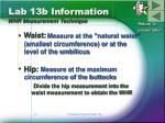 lab 13b information whr measurement technique