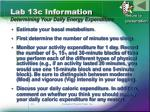 lab 13c information determining your daily energy expenditure