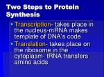 two steps to protein synthesis