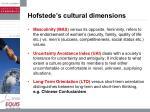 hofstede s cultural dimensions23