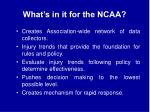 what s in it for the ncaa