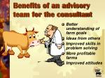 benefits of an advisory team for the consultant