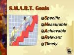 s m a r t goals