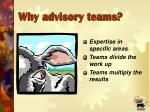 why advisory teams