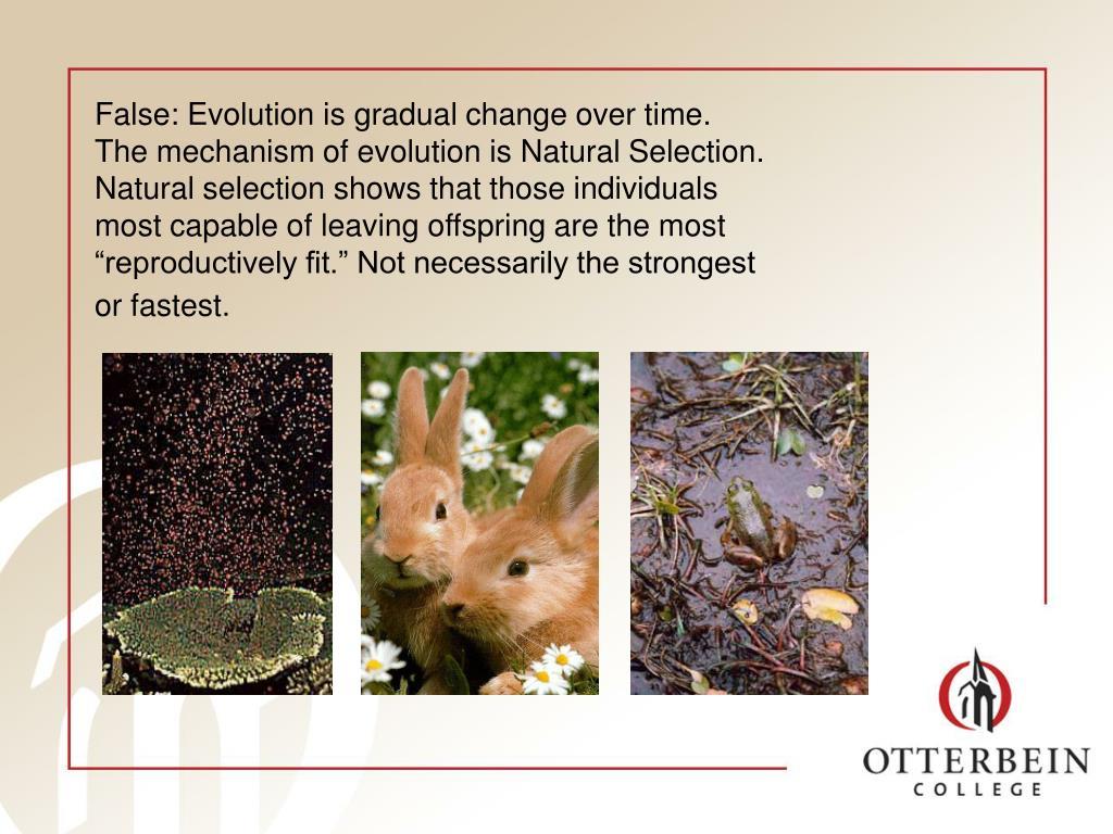 False: Evolution is gradual change over time.