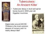 tuberculosis an ancient killer