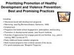 prioritizing promotion of healthy development and violence prevention best and promising practices