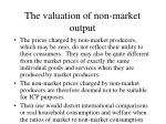 the valuation of non market output