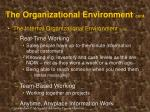 the organizational environment cont22
