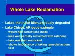 whole lake reclamation