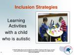 inclusion strategies46