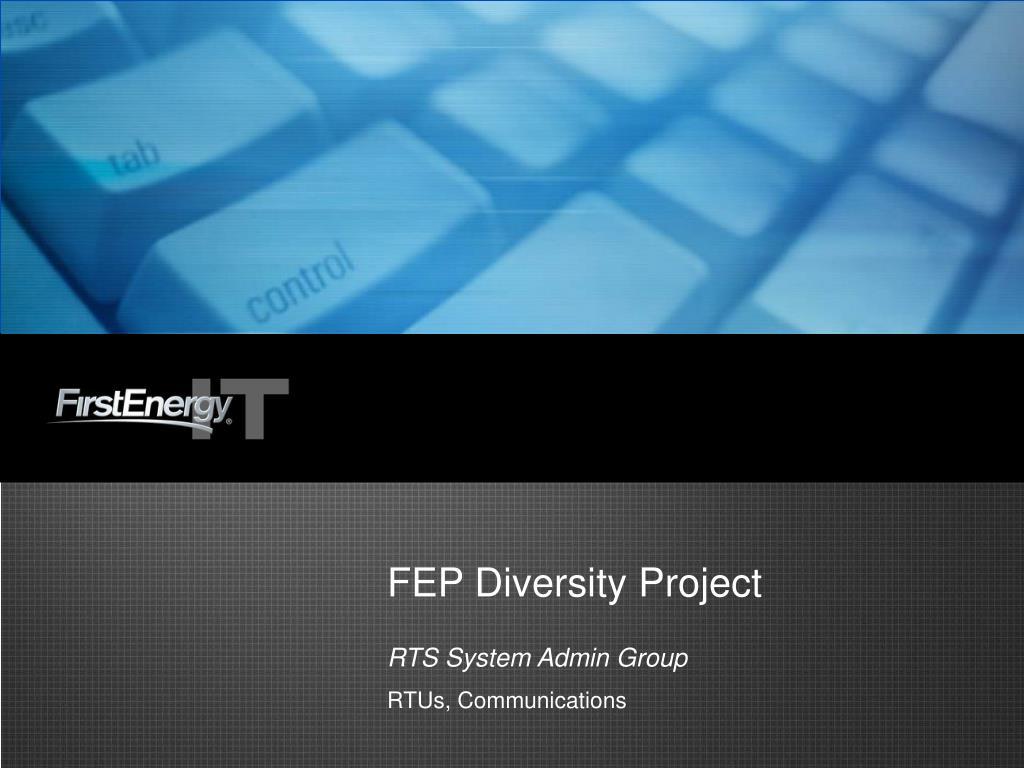 fep diversity project l.