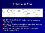 action of 6 apa