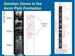 solution zones in the avon park formation