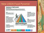 new usda food pyramid
