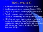 ndvi what is it