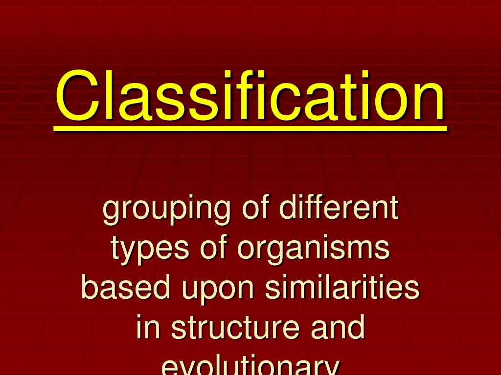 classification l.