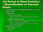 3rd period of plant evolution diversification of vascular plants