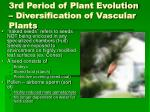3rd period of plant evolution diversification of vascular plants40