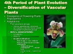 4th period of plant evolution diversification of vascular plants