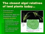 the closest algal relatives of land plants today