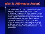 what is affirmative action19