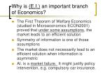 why is e i an important branch of economics6