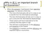 why is e i an important branch of economics7