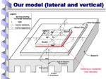 our model lateral and vertical