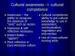 cultural awareness cultural competence